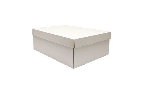 Cutii pentru pantofi
